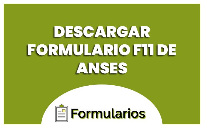 descargar formulario f11