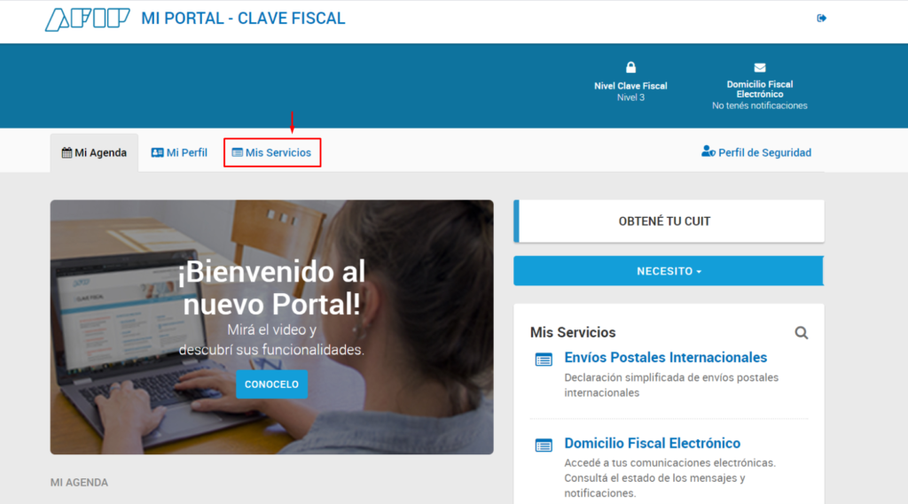 presentar online formulario afip