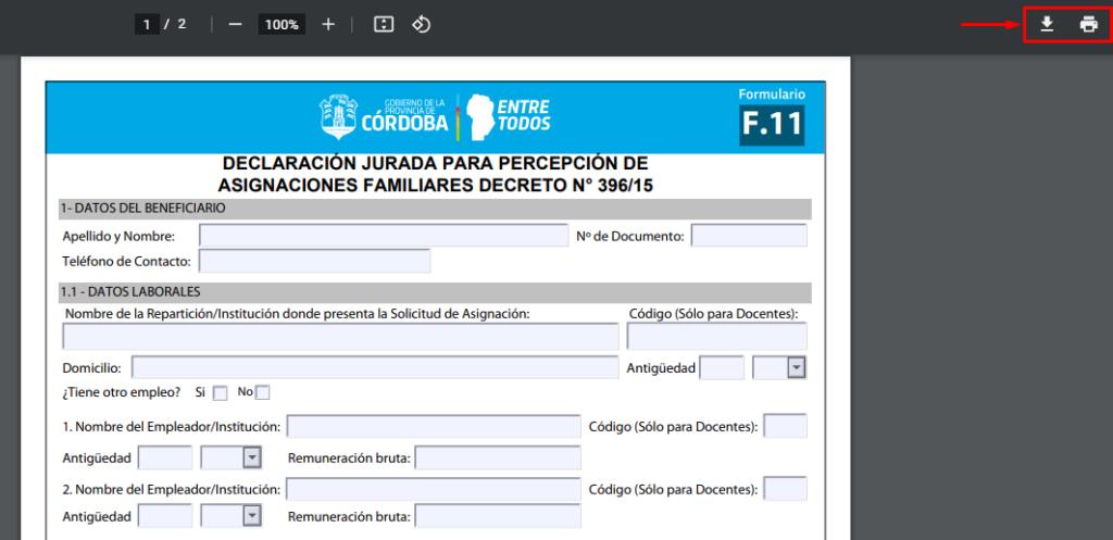 formulario f 11 anses