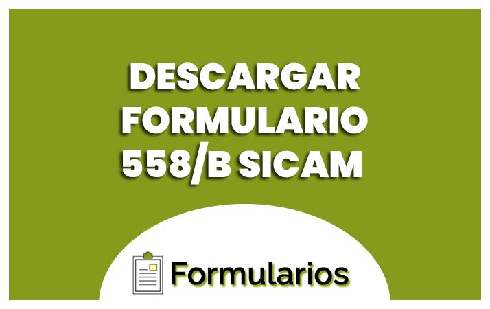 formulario 558b